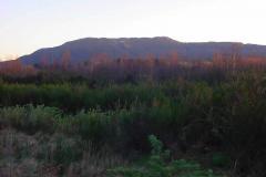 MountTarawera